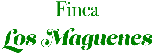 Finca Los Maguenes, Abama, Tenerife